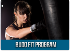Budo Fit Program